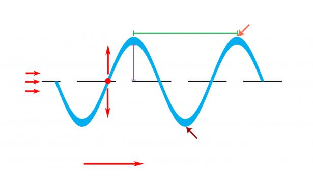 <p>Fig. 5. Use this template to label amplitude, wavelength, crest, trough, disturbance, direction of energy flow, and motion of an object.</p><br />