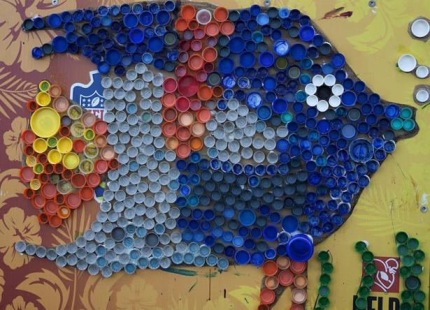 "<p>Fig. 1. This art peice was made by children in 2013 and put on display at the ""Eco-Friendly In the Park"" Earth Day Expo near Riseley Field at Marine Corps Base Hawaiʻi. It is made of recycled bottle caps pasted together.</p><br />"