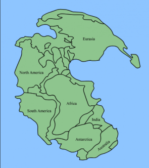 <p>Fig. 10. A visual representation of how the continents fit together to form one solid land mass, called Pangea.</p>