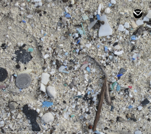 <p>Fig. 3. Microplastics scattered in beach sand.</p>