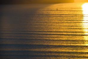 <p>Fig. 7.&nbsp;Ocean swells in wave sets outside Lyttelton Harbour, New Zealand.</p>