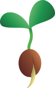 <p>Fig. 1. A plant begins sprouting from it's seed. What do plants need to grow?</p>