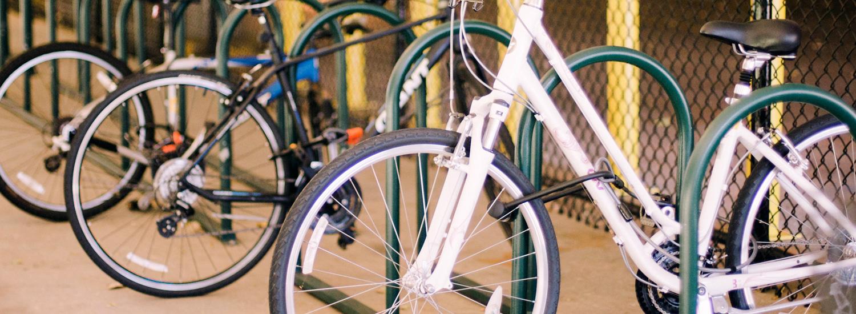 Bikes locked up in bike cage