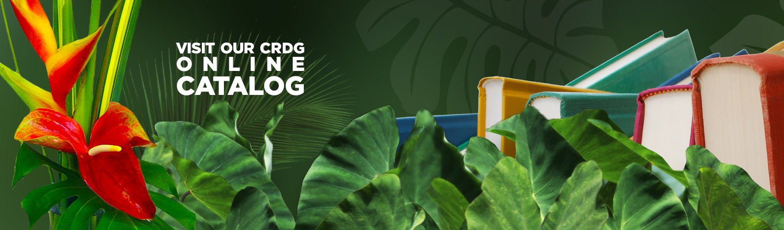 crdg online catalog