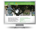 chinese language flagship program website graphic