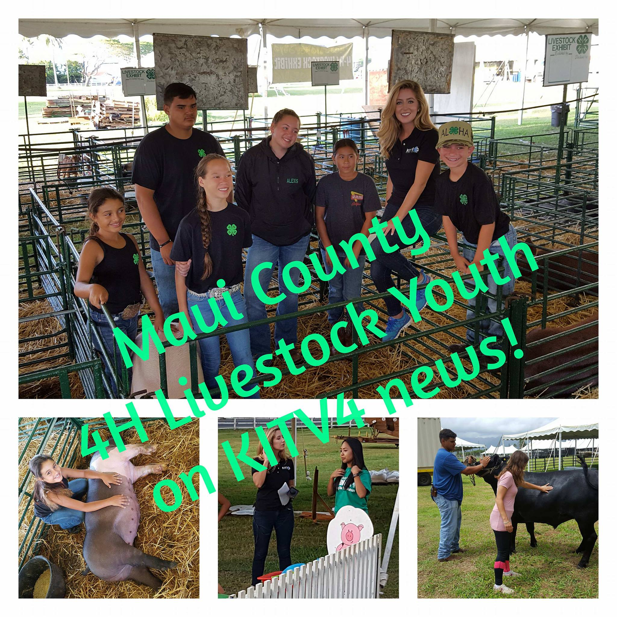 Maui County Youth at State Livestock Show