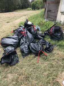 Bags of trash at 2019 Beach Clean Up