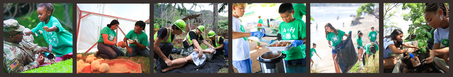 Hawaii State 4-H Program