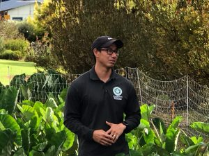 Jensen Uyeda in the field discussing the kalo production using aquaponics