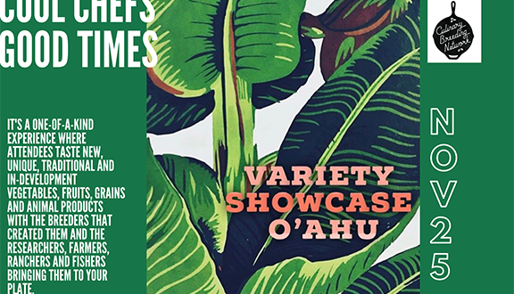 Variety Showcase Oahu Fllyer