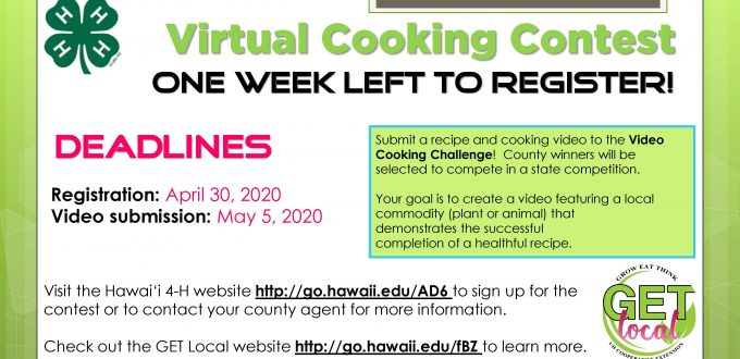 contest flyer with exteded registration deadline to april 30, 2020