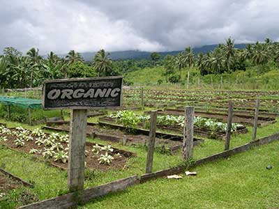 Pacific Food Guide, Hawaii, Food and Land