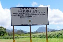 akk-8-011-4-banana-quarantine-sign_2889-2_5671050774_o