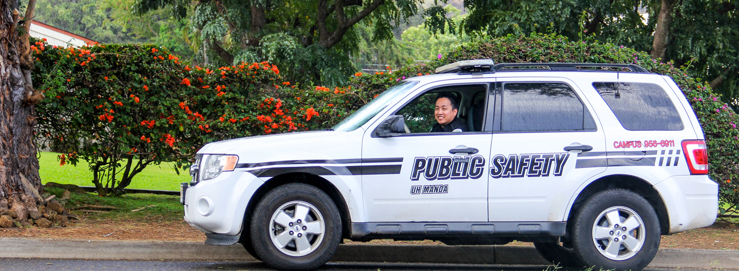 DPS officer in a DPS vehicle