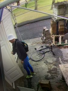 Photo of Holmes Hall Burglary suspect