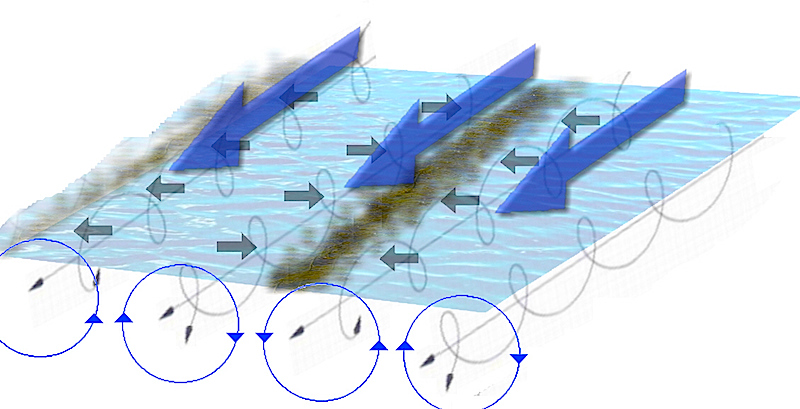<p><strong>Fig. 3.25.</strong> (<strong>A</strong>) Water movement in Langmuir circulation</p>