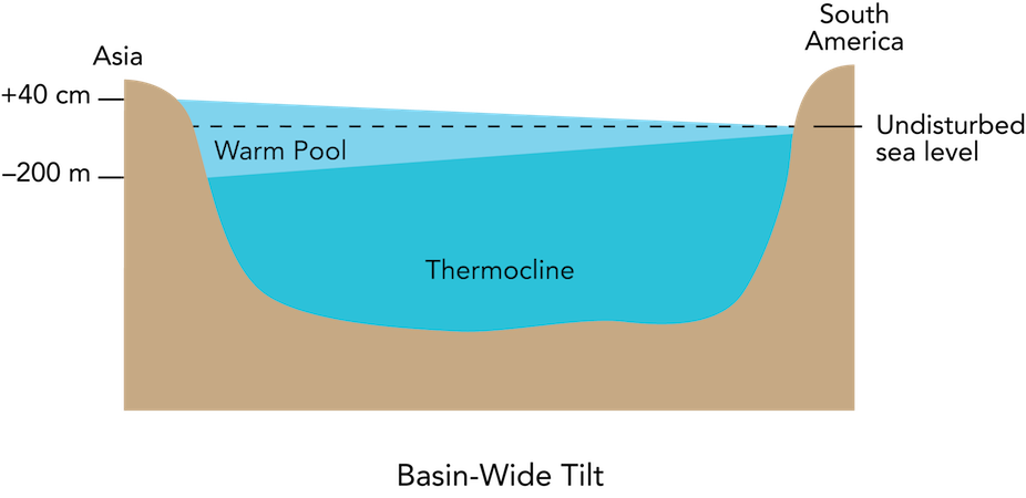 <p><strong>Fig. 3.26.</strong> Basin-wide tilt on a cross section of the Pacific ocean basin at the equator. Sea level is higher, and the thermocline deeper, at the western end of the ocean basin. Note that the diagram is exaggerated and not drawn to scale.</p>