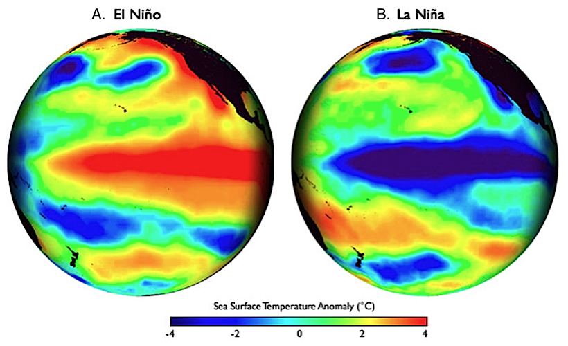 <p><strong>Fig. 3.27.</strong> Global maps of the Pacific ocean basin show patterns of sea surface temperature during (<strong>A</strong>) El Niño and (<strong>B</strong>) La Niña events. Sea surface temperature is presented as compared to long-term average values in those locations. The red- and blue-colored streaks along the equator illustrate hotter-than-average and colder-than-average sea surface temperatures associated with El Niño and La Niña events, respectively.</p>