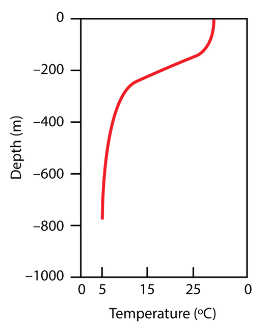 <p><strong>Fig. 9.18.</strong> The thermocline is a vertical zone of rapidly decreasing ocean temperature with depth. It is particularly pronounced in the tropics. In this figure the thermocline is at 200 m deep.</p>