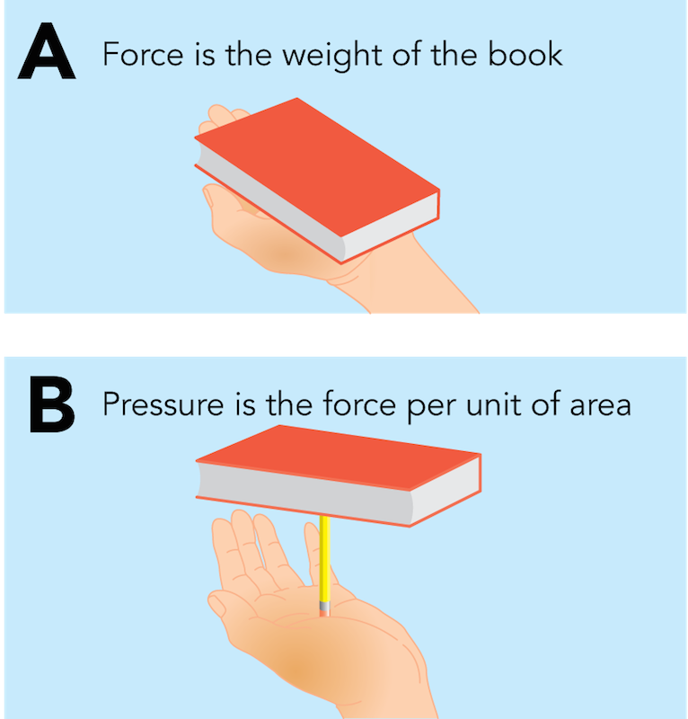 <p><strong>Fig. 9.10.</strong> The (<strong>A</strong>) force exerted on your hand from a book is different from the (<strong>B</strong>) pressure felt from the book when it is placed on a pencil.</p>