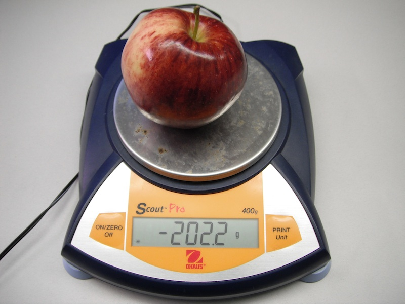 <p><strong>SF Fig. 1.4.</strong> Instrumental error occurs when instruments give inaccurate readings, such as a negative mass reading for the apple on a scale.&nbsp;</p><br />