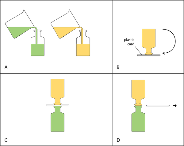 <p><strong>Fig. 2.18.</strong> Steps in manipulating bottles of liquids to observe gravitational flow between two liquids. (<strong>A</strong>) Add food coloring to one of the bottles and pour liquid into each bottle. (<strong>B</strong>) Invert the top bottle using a card to hold the liquid in the bottle. (<strong>C</strong>) Place the two bottles together. (<strong>D</strong>) Carefully remove the card.</p>