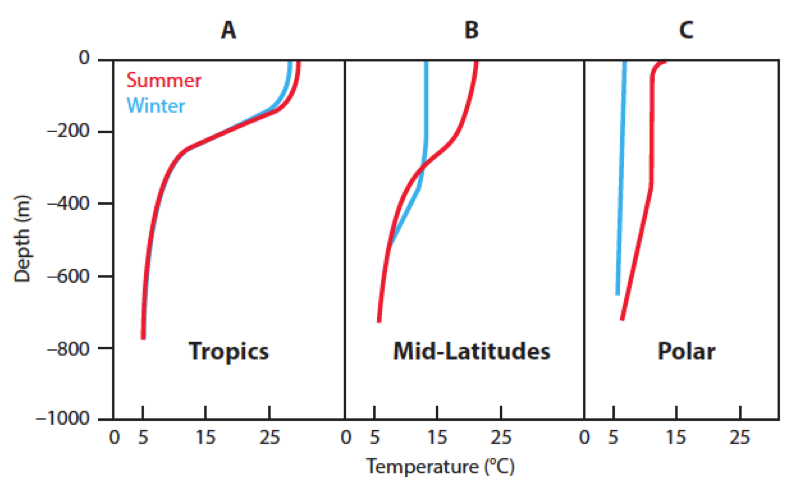 <p><strong>SF Fig. 2.5.</strong> Idealized vertical temperature ocean profiles in July and January (A) near the equator, (B) at approximately 45&ordm; N or S latitude, and (C) near the poles.</p>