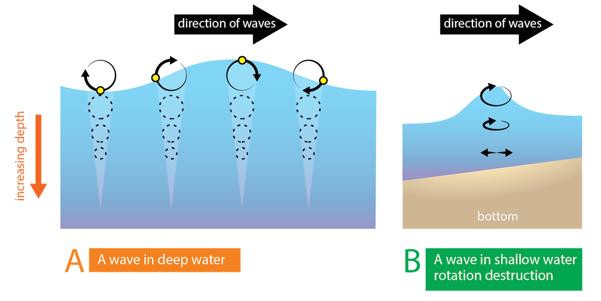 Waves: a mathematical approach to the common types of wave motion