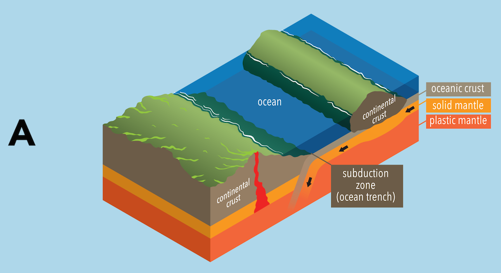 <p><strong>Fig. 7.24.</strong> (<strong>A</strong>) A subduction zone forms when oceanic crust slides under continental crust.</p>
