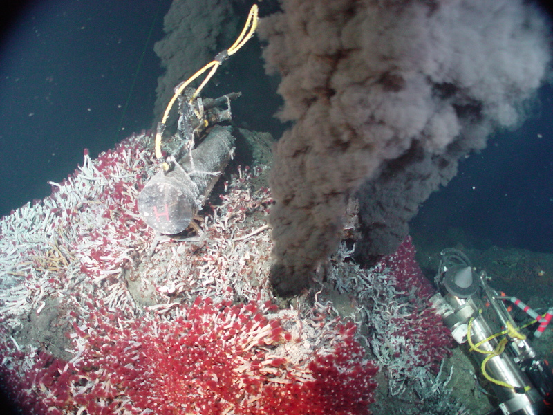 <p><strong>Fig. 2.3.</strong>&nbsp;(<strong>C</strong>) A black smoker (Sully Vent) covered with tube worms in the Main Endeavor Vent Field in the northeast Pacific ocean basin. An acoustic hydrophone and resistivity-temperature-hydrogen (RTH) probe rests on the vent.</p>