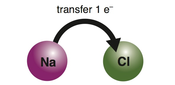 <p><strong>Fig. 2.24.</strong> (<strong>A</strong>) Electron transfer</p>