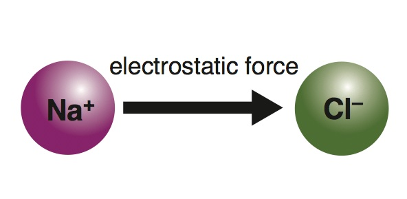 <p><strong>Fig. 2.24.</strong>&nbsp;(<strong>B</strong>) Attraction by electrostatic force</p>