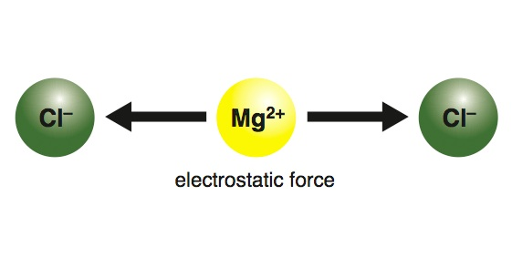 <p><strong>Fig. 2.25.</strong>&nbsp;(<strong>B</strong>) Attraction by electrostatic force</p>