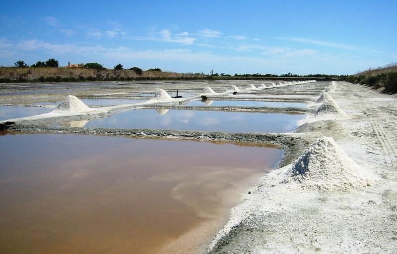 <p><strong>Fig. 2.20.</strong> Solar evaporation pond for salt production in Ile de Ré, France</p>