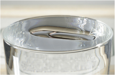 <p><strong>B</strong>. A paperclip floating on water</p>