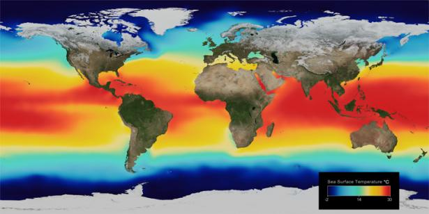 <p><strong>Fig. 2.8. </strong>Average global sea surface temperatures. Reds and yellows indicate warmer temperatures; blues and purples represent colder temperatures. The scale is in units of degrees Celsius.</p><br />