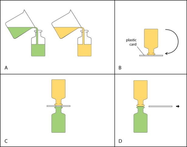 <p><strong>Fig. 2.18.</strong> Steps in manipulating bottles of liquids to observe gravitational flow between two liquids. (<strong>A</strong>) Add food coloring to one of the bottles and pour liquid into each bottle. (<strong>B</strong>) Invert the top bottle using a card to hold the liquid in the bottle. (<strong>C</strong>) Place the two bottles together. (<strong>D</strong>) Carefully remove the card.</p><br />