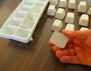 <p><strong>Fig. 3.17.</strong> (<strong>A</strong>) Clod cards removed from their ice cube tray mold</p><br />