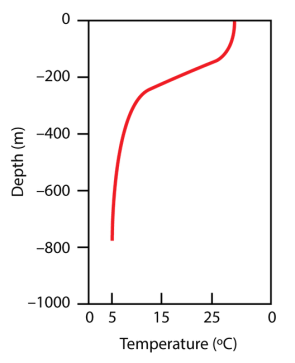 <p><strong>Fig. 9.18.</strong> The thermocline is a vertical zone of rapidly decreasing ocean temperature with depth. It is particularly pronounced in the tropics. In this figure the thermocline is at 200 m deep.</p><br />