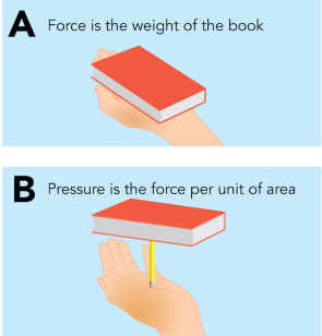 <p><strong>Fig. 9.10.</strong> The (<strong>A</strong>) force exerted on your hand from a book is different from the (<strong>B</strong>) pressure felt from the book when it is placed on a pencil.</p><br />