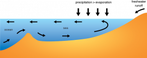 <p><strong>Fig 2.21.</strong> (<strong>B</strong>) Thermohaline circulation in the Baltic Sea is driven by high rates of precipitation and runoff. Less dense water flows out of the sea on the surface and denser water flows in along the ocean floor.</p><br />