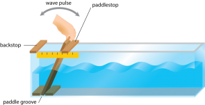 <p><strong>Fig. 4.21.</strong> Wave tank set up for observing orbital wave motion. (This image is not to scale; the paddle, paddlestop, and ruler have been enlarged relative to the size of the tank.)</p><br />