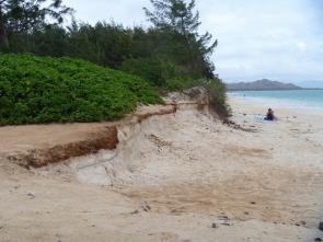 <p><strong>Fig. 5.28.</strong> Shoreline erosion along Kailua Beach, Hawai'i</p><br />