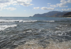<p><strong>Fig. 6.1.</strong> (<strong>A</strong>) High tide at&nbsp;Ma'ili Point on the island of O'ahu, Hawai'i</p><br />
