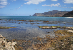 <p><strong>Fig. 6.1.</strong> (<strong>B</strong>) Low tide at&nbsp;Ma'ili Point</p><br />