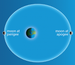 <p><strong>SF Fig. 6.12.</strong> (<strong>A</strong>) An exaggerated diagram showing the elliptical orbit of the moon around the earth.</p><br />