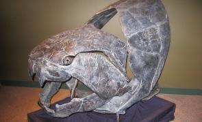 <p><strong>Fig. 7.11.</strong> (<strong>B</strong>) Artist rendering of the 10-m long prehistoric armored fish <em>Dunkleosteus</em> , which lived in the Paleozoic era.</p><br />