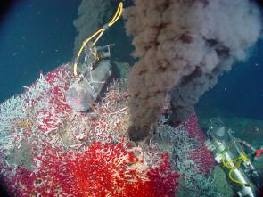 <p><strong>Fig. 7.63.</strong> (<strong>A</strong>) Black smokers emit dark sulfides, Sully Vent in the Main Endeavour Vent Field, northeast Pacific ocean basin.</p><br />