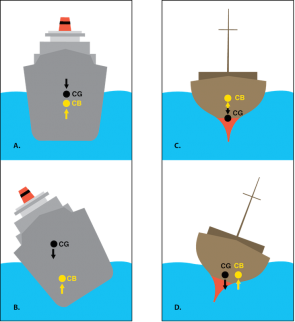 <p><strong>Fig. 8.43.</strong> The forces of buoyancy and gravity affect stable and unstable ships. (<strong>A</strong>) A stable ship in calm water with its center of gravity (CG) and center of buoyancy (CB) positions marked. (<strong>B</strong>) An unstable ship with unevenly distributed density cannot tilt itself back upright. (<strong>C</strong>) A ship with a weighted hull (uneven density) in calm water. (<strong>D</strong>) An unstable ship with a weighted hull (uneven density) that cannot right itself from a tilted position.</p><br />