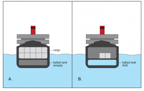 <p><strong>Fig. 8.44.</strong> A cross-sectional diagram of a ship (<strong>A</strong>) with cargo and (<strong>B</strong>) without cargo, but with added ballast.</p><br />